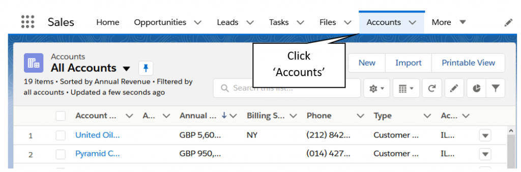 Screenshot showing how to access List Views via the Account Tab